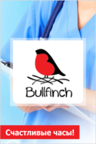 Bullfinch logo1